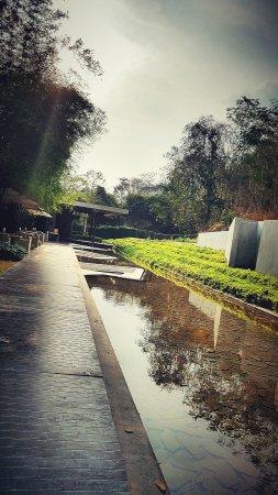 """Botanica Khao Yai: 20170308_164550_mix01_large.jpg"""""""
