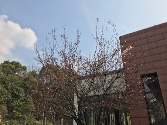 Shenye Bantang Yuquanzhuang Hot Spring Resort