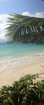 Petite Anse: photo2.jpg