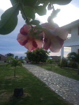 San Juan, Philippines : photo4.jpg