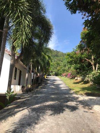 PS Hill Resort: photo2.jpg