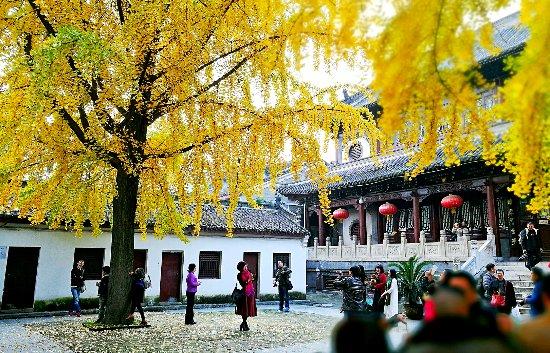 "Xiangyang, China: IMG_20161119_162744_1-01_mh1479553128116_large.jpg"""