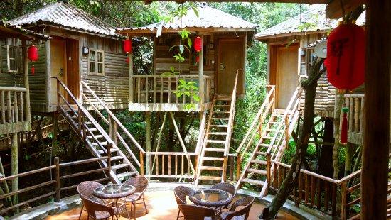 Yingde, China: 树上木屋