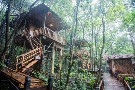 Yingde, China: 树屋