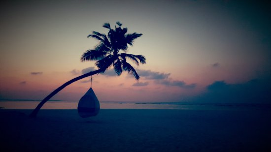 Dhonakulhi Island: 怎么提交的照片看不到?