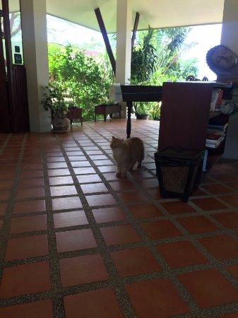 Baan KanTiang See Villa Resort (2 bedroom villas) Φωτογραφία