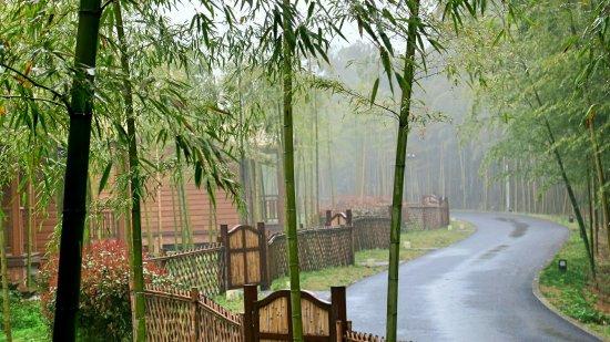 Kaiyuan Fangcaodi Xiangcun Hotel