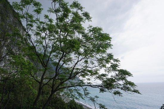 Hualien, Taiwan: _DSC1501_large.jpg