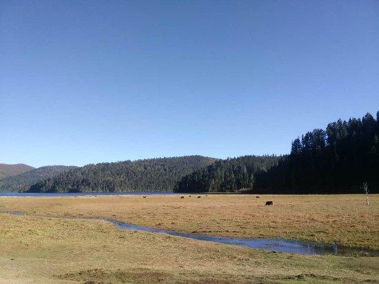 Shudu Lake: 徒步的终点