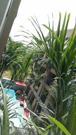 The Cottage Suvarnabhumi: wx_camera_1492135982829_large.jpg