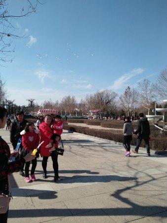 Baoding Botanical Garden: IMG20170226105934_large.jpg