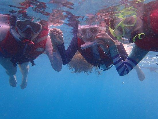 Sipadan Kapalai Dive Resort : photo5.jpg