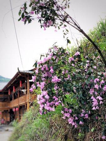 Hongjiang, Cina: 玉龙湖生态农庄