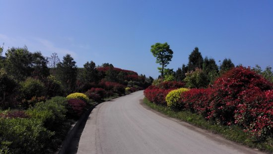 Yanting County, China: 嫘祖陵景区
