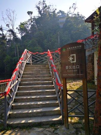 Mt. Dawei Natural Reserve: 大围山保护区