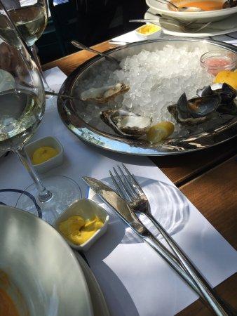 Big Fish Budapest Hostel : photo1.jpg