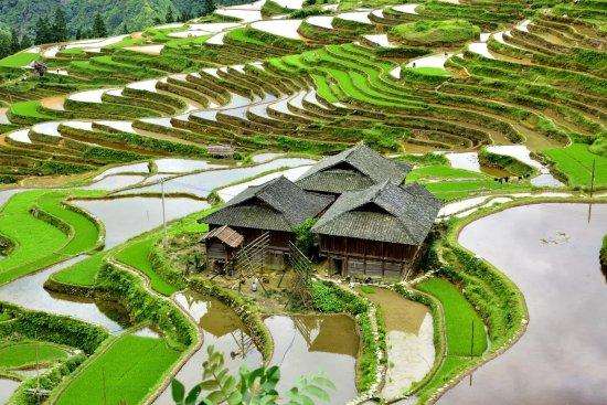 Congjiang County, Çin: 1494048512721_large.jpg