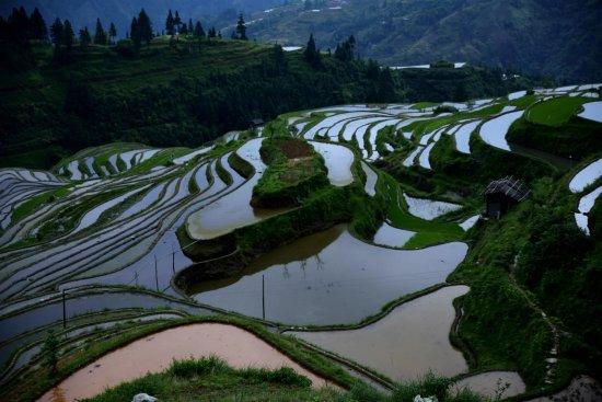Congjiang County, China: 1494048528935_large.jpg