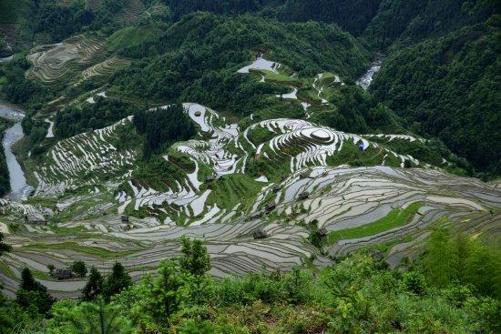 Congjiang County, China: 1494048535245_large.jpg