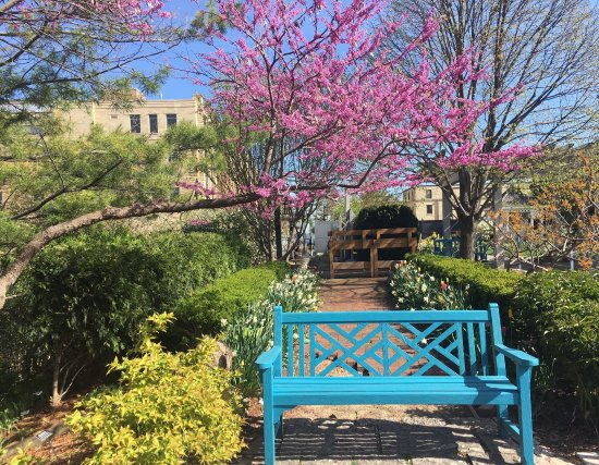Allen Centennial Gardens: It's really cool.i love it very much.
