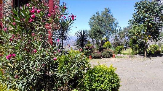 Top Twelve Hotel - Lalibela: 庭院
