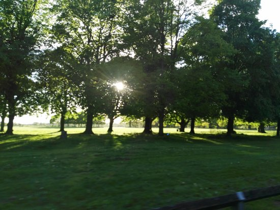 Coombe Abbey Country Park: IMG_20170514_193338_large.jpg
