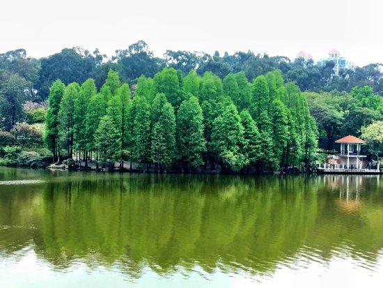 Luhu Park