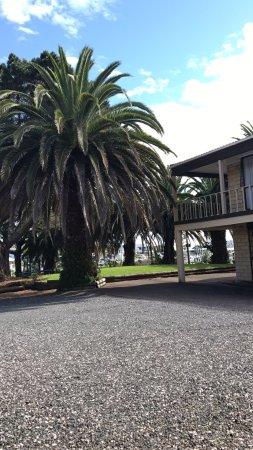 Manukau, Selandia Baru: photo1.jpg