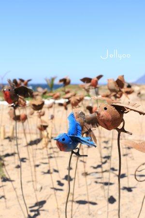 Kalk Bay, Sør-Afrika: Harbour House 门口 可以购买的小工艺品