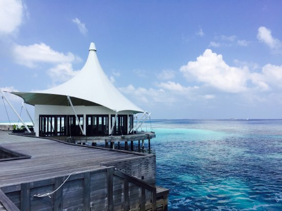 Niyama Private Islands Maldives: Wonderful paradise!