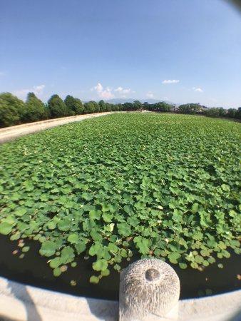 Jianshui County, China: photo7.jpg