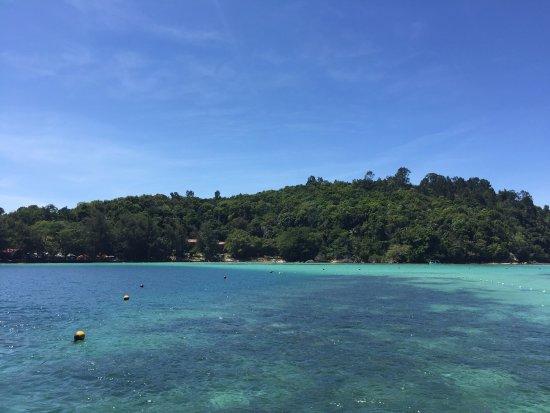 Coral Flyer: 打卡拍照