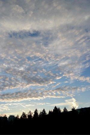 Burnaby, Kanada: photo1.jpg