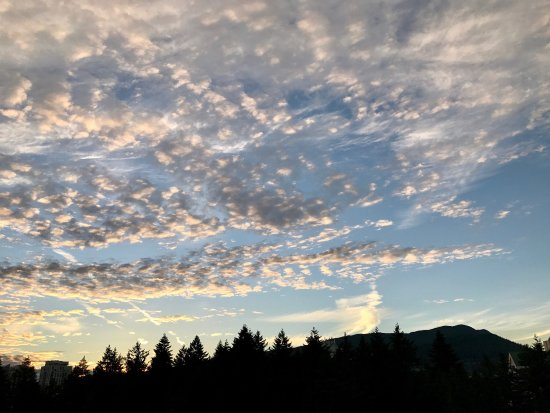 Burnaby, Canada : photo4.jpg
