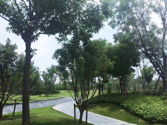 Кайфэн, Китай: photo6.jpg