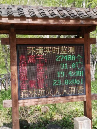 Yanji, Chiny: IMG_20170617_132916_large.jpg