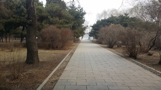 Shenyang, Cina: 北陵公园冬天景色  winter view in the park