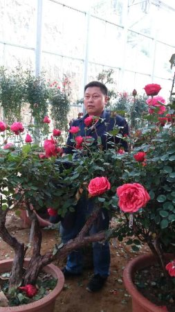 Yingshan County, الصين: 英山烈士陵园