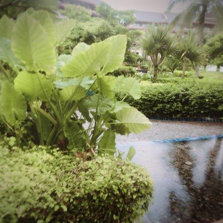 The Ritz-Carlton Sanya, Yalong Bay: photo7.jpg