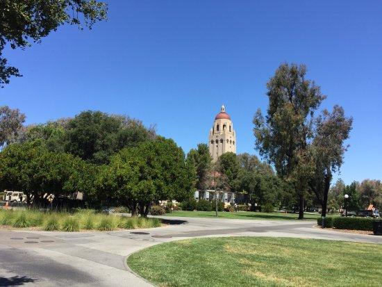 Stanford University: photo0.jpg