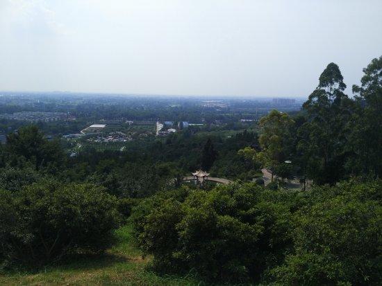 Xinjin County 사진