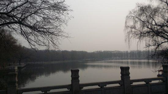 Shenyang, China: 20170326_093107_large.jpg