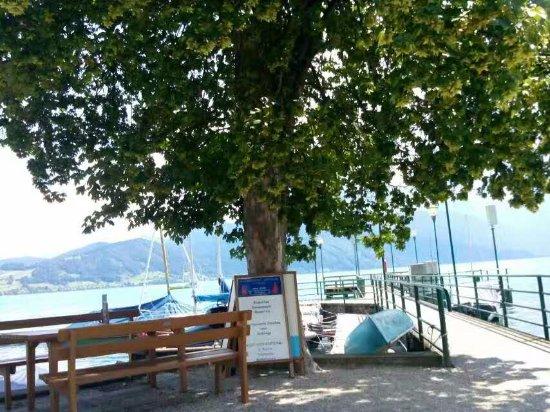 Austrian Alps, Áustria: 坐小火车到阿特湖后发现酒店在湖对岸,然后在这可以坐观光boat过去~