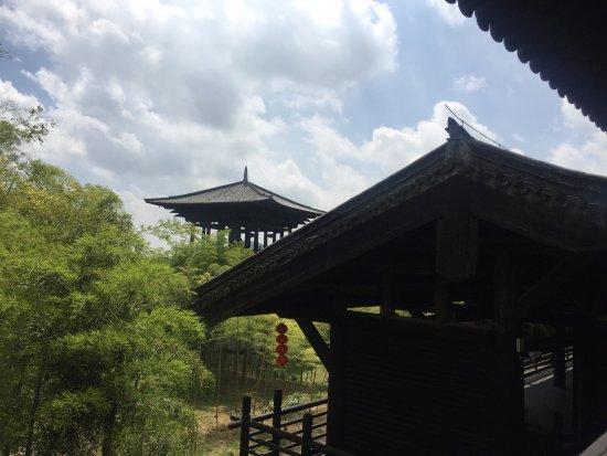 Changxing County, Kina: 大唐贡茶苑