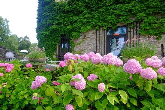 Chateau de Coudree: photo5.jpg