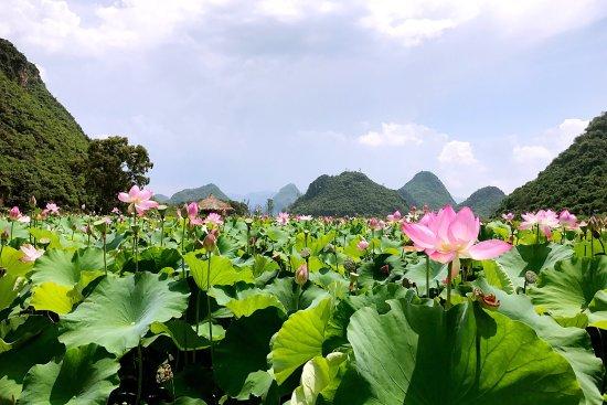 Qiubei County, Chiny: photo6.jpg