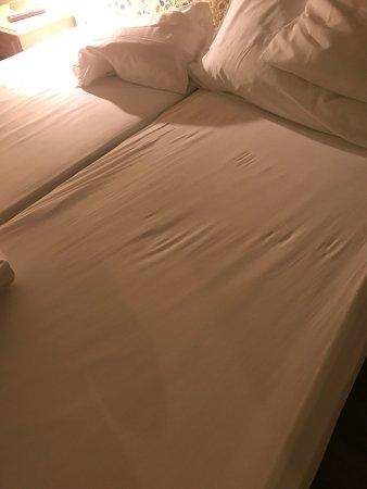 Hotel Albatros: photo4.jpg