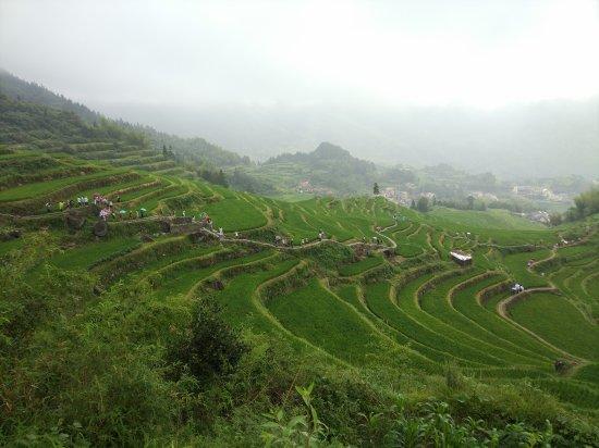 Yunhe County, Kina: 云和梯田
