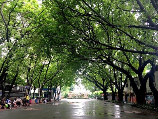Guangzhou Cultural Park