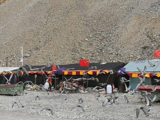 Зона Багмати, Непал: Paldor Peak Guest House